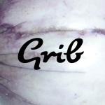 logo-grib-carre-803x803